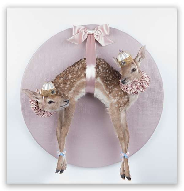 Attached Animal Taxidermy