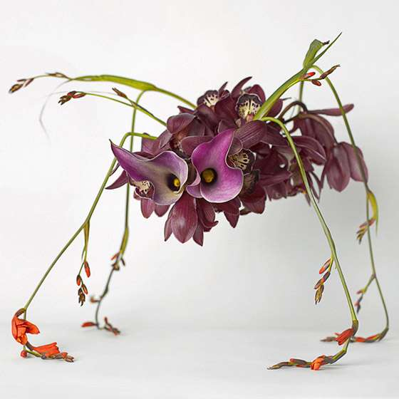 Petal Monsters