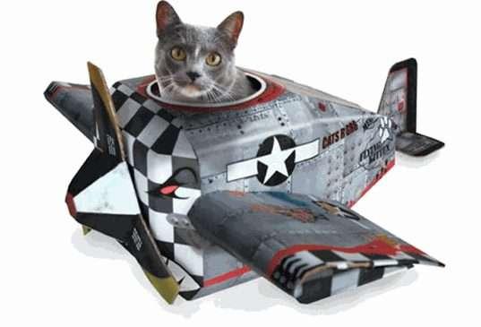 Flying Feline Playhouses