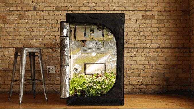 Indoor gardening systems summit grow lab for Indoor gardening trends