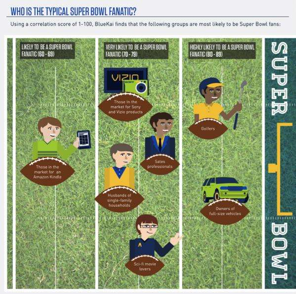 Super Bowl fan Infographic