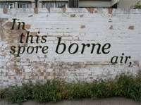 Sustainable Public Graffiti Art