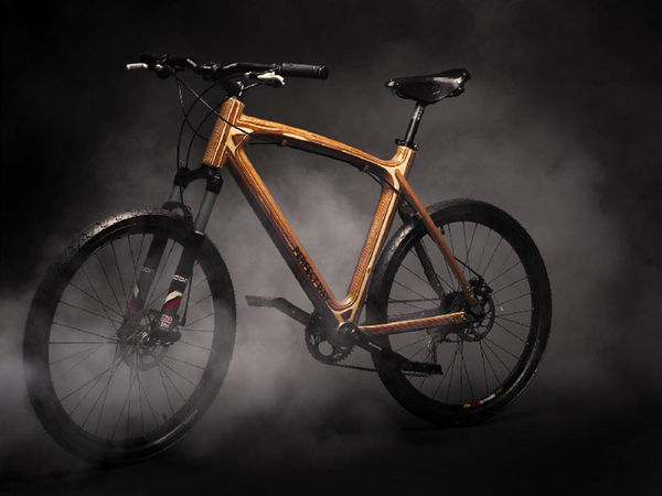 sustainable wooden bike