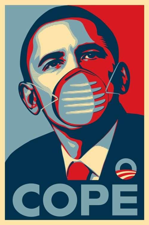Swine Flu Social Art