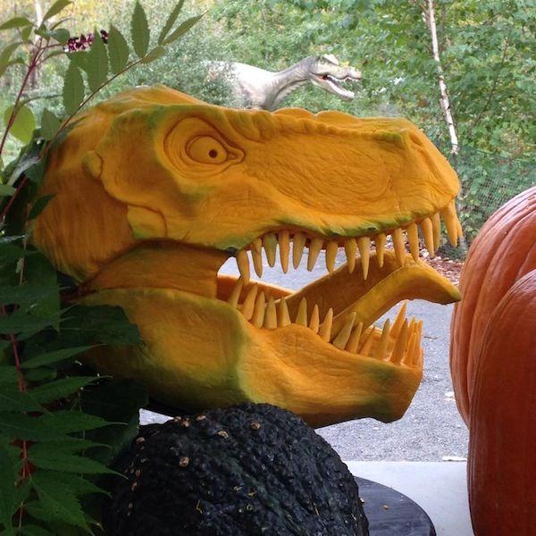 Jurassic Jack O Laterns T Rex Pumpkin