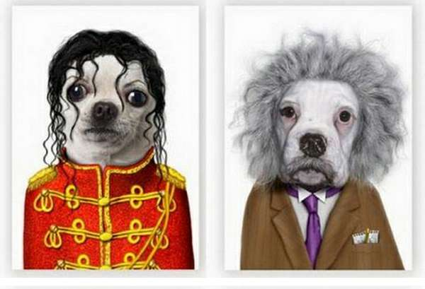 Animal Icon Impersonators