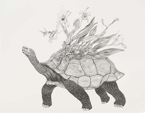 Exploding Floral Animals