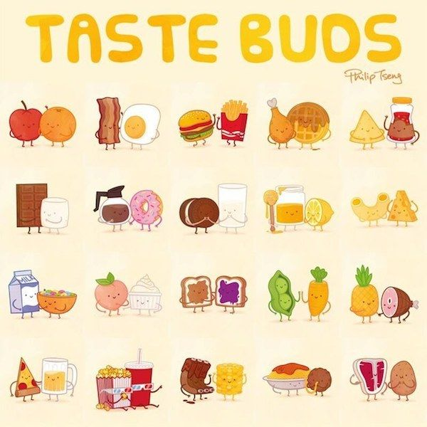 Friendly Foodpairing Illustrations
