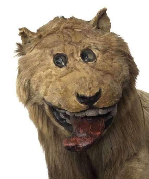 Creepy Cartoonish Taxidermy Collections