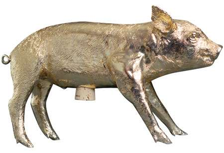 Taxidermy Piggy Banks