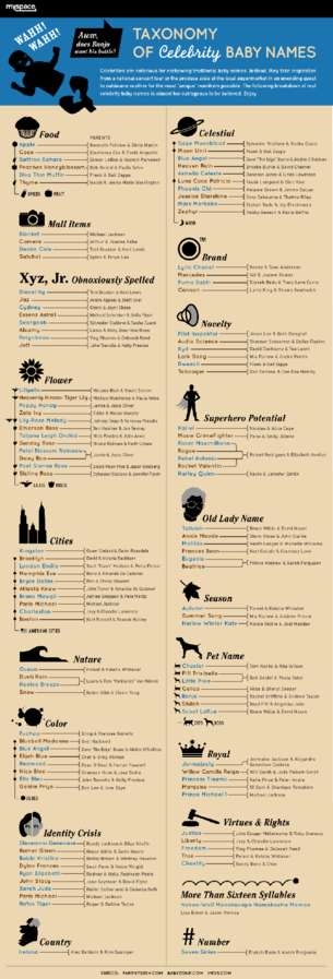 Taxonomy of Celebrity Baby Names Infographic
