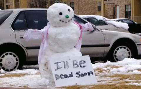 Silly Winter Creations
