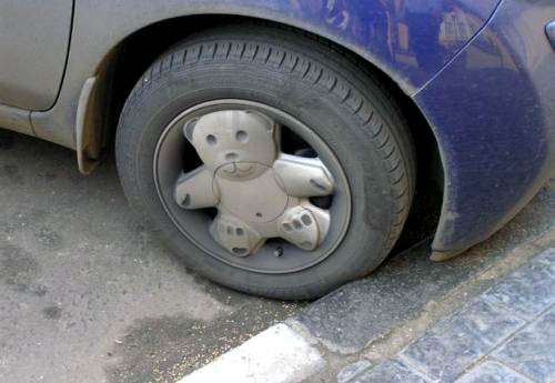 Cute Car Accessories