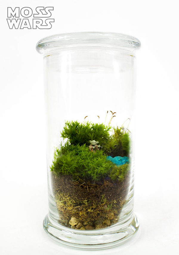 Comical Cinematic Terrariums