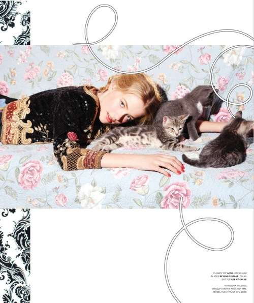 Feline-Friendly Editorials