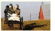 Amish Organics