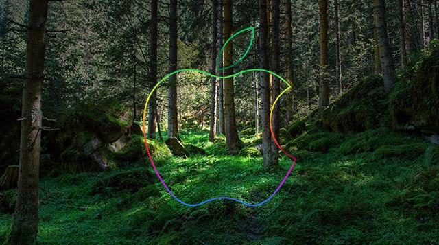 Eco Branding Initiatives