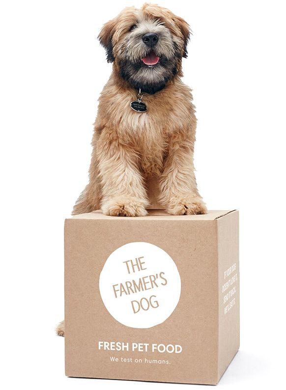 Personalized Pet Food Subscriptions