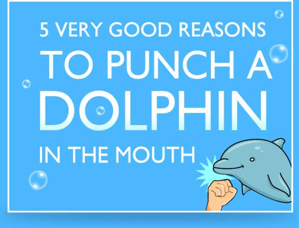 Dolphin-Punching Comics