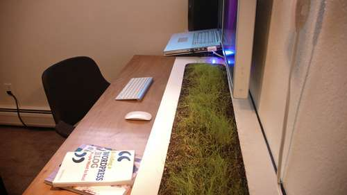 Living Desk Gardens The Organic Shelf Office Has a Bed of Real
