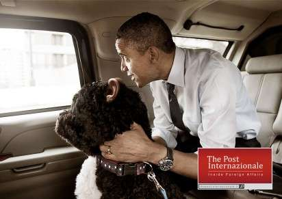 Human-Eared Pet Politic Ads