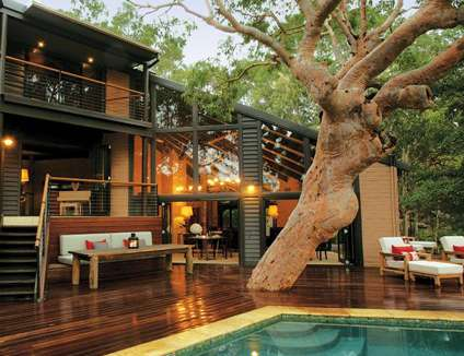 Tree skewered sanctuaries the pretty house for Beach house designs sydney