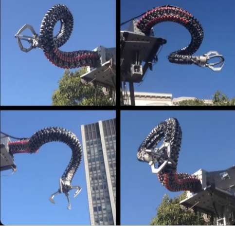 Octopus-Inspired Robotic Arms
