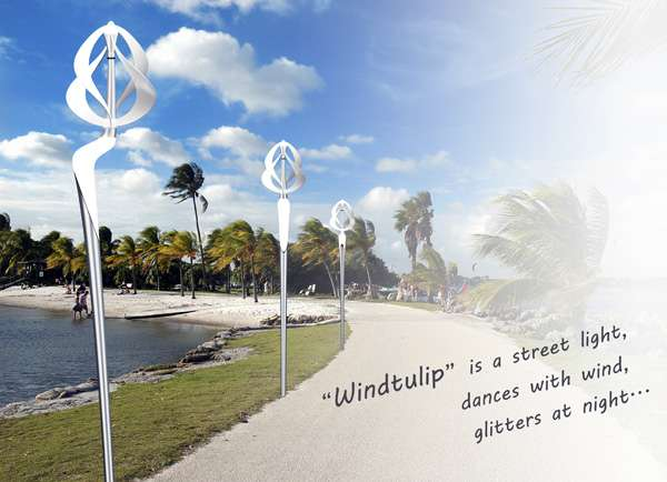 the Windtulip