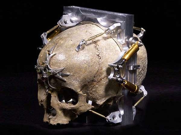 Creepy Skull Cameras
