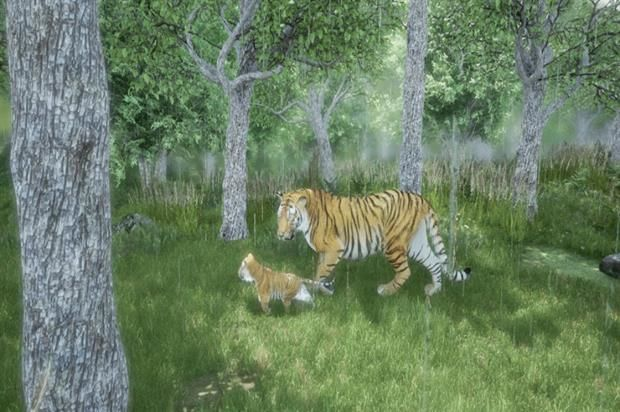 Wildlife Protection Simulators