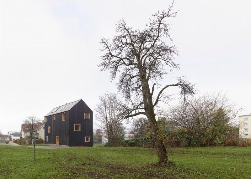 Ebonized Timber Homes