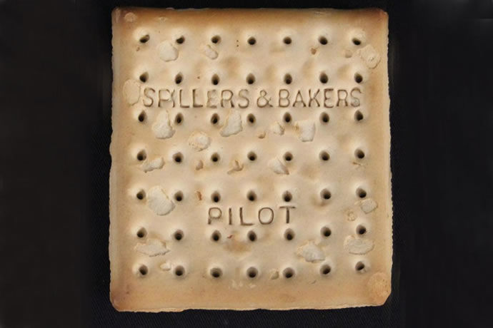 Shipwreck-Recovered Biscuits
