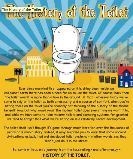 Toilet History Infographics