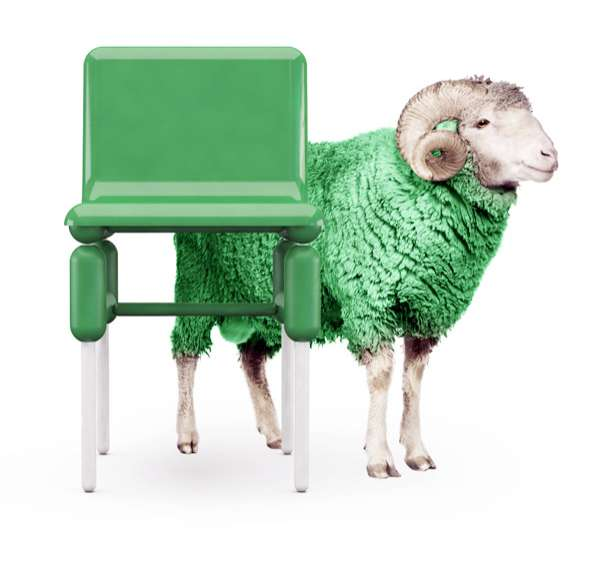 Sheepish Chaise Collections