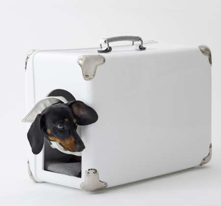 Sleek Pet Carriers