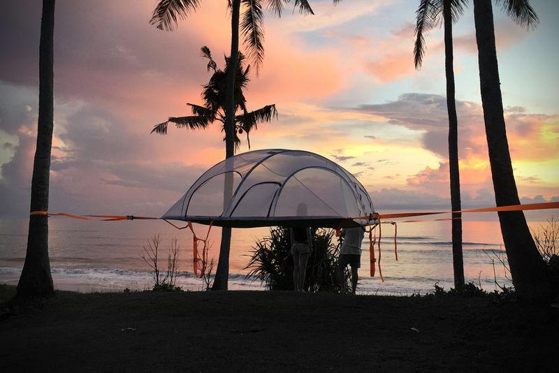 Levitating Tree Tents