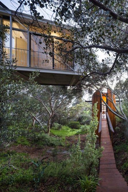 Tree Top Studio Structures
