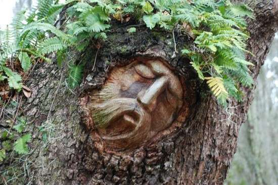 Spiritual Tree Trunk Sculptures
