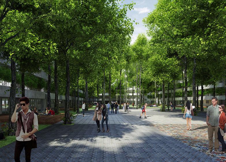Arboreal University Architecture