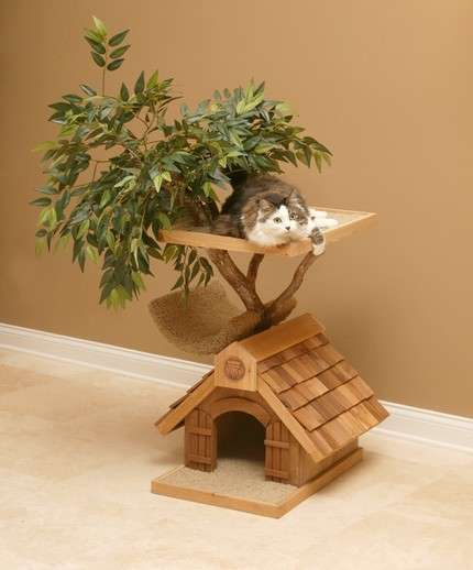 Treehouses for Cats