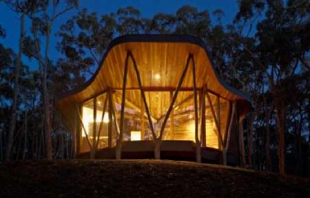 Organic Lumber Lodgings