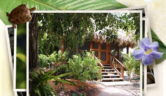 Luxurious Caribbean Resorts
