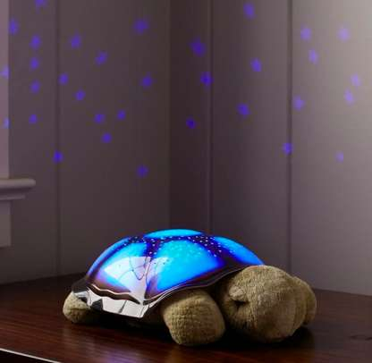 Turtle Night Light