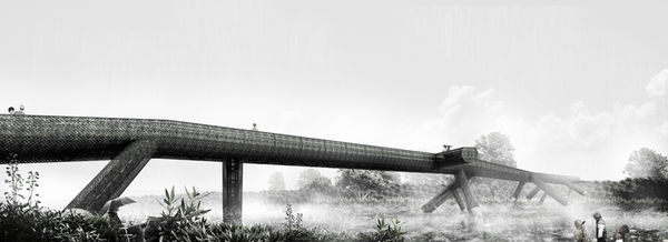 Nature-Inspired Bridge Designs
