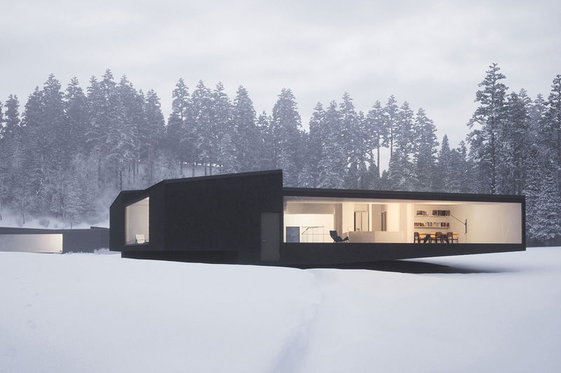Modular Mirrored Homes