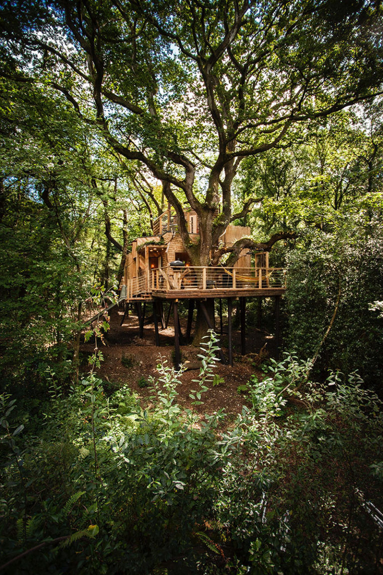 Luxurious Treehouse Hotels