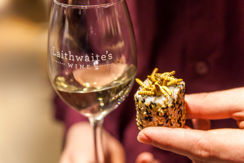 Insect Wine Pairings