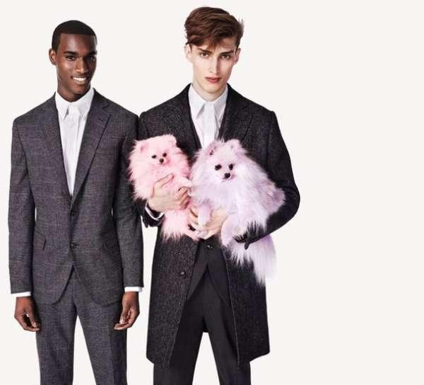 Pink Puppy Accessories