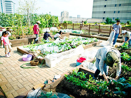 54 Examples of Urban Garden Innovations