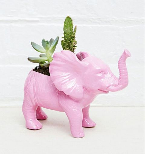 Jungle-Themed Planter Accessories